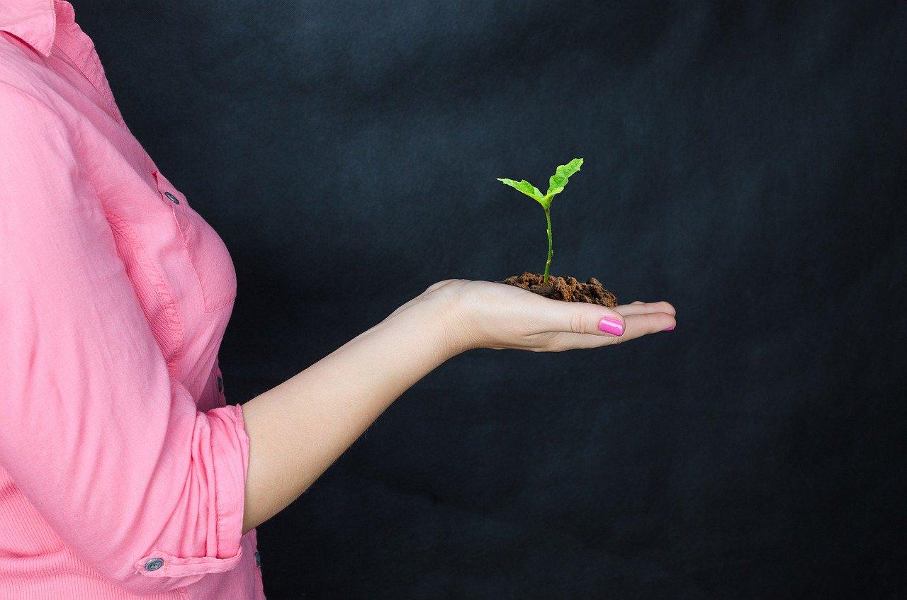 Augmenter ses revenus - Une méthodologie appropriée est déterminante